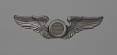 view Bombadier wings owned by Fenton B. Sands digital asset number 1