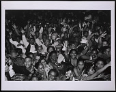 view Photograph of 2 Live Crew fans in Miami, Florida digital asset number 1