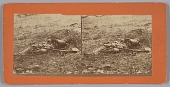 view Stereograph of a deceased soldier on the battlefield after Gettysburg digital asset number 1
