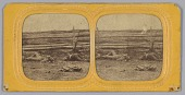 view Stereograph of deceased Confederate soldiers near a fence at Antietam, Maryland digital asset number 1