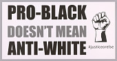 """view Posters stating """"Pro-Black Doesn't Mean Anti-White"""" used at MMM 20th Anniversary digital asset number 1"""
