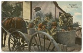 view Postcard of a banana and pineapple vendor digital asset number 1