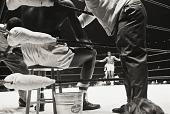 view <I>Ali vs.Terrell, The Astrodome, Houston, 1967</I> digital asset number 1