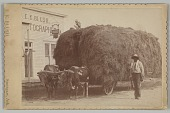 view Albumen print of a man with a full hay cart digital asset number 1