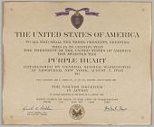 view Purple Heart Citation issued for First Lieutenant John E. Warren, Jr. digital asset number 1