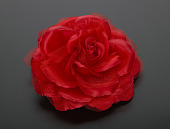 view Silk rose worn by Sybrina Fulton at the 2016 Democratic National Convention digital asset number 1