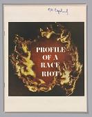 view <I>Profile of a Race Riot</I> digital asset number 1