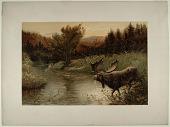 view A Moose Hunt digital asset: A Moose Hunt