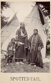 view Spotted-Tail, Sioux Indian digital asset number 1