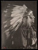 view Chief Iron Tail, Sioux Indian, in Feather Headdress digital asset number 1