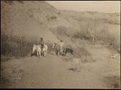 view Sioux Indians on the Dakota Plains digital asset number 1
