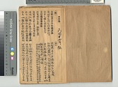 view Chinese Immigrant Study Guide digital asset number 1