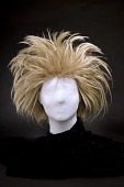 view Fright wig worn by Phyllis Diller digital asset number 1