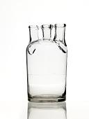 view Woulff Bottle digital asset: Wolff Bottle