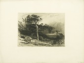 view Maine Coast digital asset: Print by James David Smillie - Old Cedars