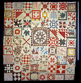view 1841 - 1844 Mary Taylor's Album Quilt Top digital asset number 1