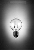 view Maxim carbon-filament incandescent lamp digital asset number 1