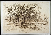 view An Apple Orchard -- Easthampton, L. I. digital asset number 1