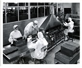 view [People working on antibiotic production; black-and-white photoprint] digital asset: [People working on antibiotic production; black-and-white photoprint].