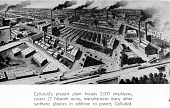 view [Illustration of Celluloid Factory buildings: section of booklet page] digital asset: [Illustration of Celluloid Factory buildings: section of booklet page]