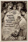 view No. 4711 White Rose Glycerine Soap. [Handbill.] digital asset: No. 4711 White Rose Glycerine Soap. [Handbill.]