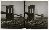 view [Low view of Brooklyn Bridge.] Active no. 446 : stereo interpositive digital asset: [Low view of Brooklyn Bridge.] Active no. 446 : stereo interpositive.