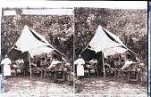 view ---es on a Vaccine Farm, Coamo Springs, Porto Rico. Copyright 1900 by Underwood & Underwood. [On negative.] Active no. 24307. Stereo photonegative, 1900 digital asset number 1