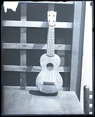 view The only Ukelele to cross the North Pole. [photonegative] digital asset: The only Ukelele to cross the North Pole. [photonegative], 07/01/1926.