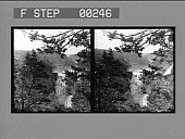 view A glimpse of one of nature's beauty spots, Genesee River and Falls, Portage. [Active no. 13504 : stereo photonegative,] digital asset: A glimpse of one of nature's beauty spots, Genesee River and Falls, Portage. [Active no. 13504 : stereo photonegative,] 1906.