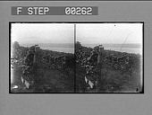 view [View of river : stereo photonegative,] digital asset: [View of river : stereo photonegative,] 1906.