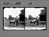 view [Man with pony on farm : stereo photonegative.] digital asset: [Man with pony on farm : stereo photonegative.]