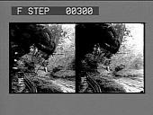 view [View of Watkins Glen. Stereo photonegative,] digital asset: [View of Watkins Glen. Stereo photonegative,] 1906.