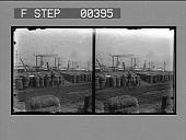 view The Cotton Levee, New Orleans, La. [Active no. 805. Stereo photonegative.] digital asset: The Cotton Levee, New Orleans, La. [Active no. 805. Stereo photonegative.]