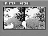 view [Overview of mountains and trees. Stereo photonegative.] digital asset: [Overview of mountains and trees. Stereo photonegative.]