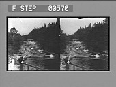 view [River rapids in forest terrain, New Hampshire.] Stereo photonegative digital asset: [River rapids in forest terrain, New Hampshire.] Stereo photonegative.