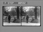 view Under the elms, Boston Common. Active no. 12812 : stereo photonegative digital asset: Under the elms, Boston Common. Active no. 12812 : stereo photonegative.