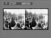 view Here beauty dwells among the evergreens, Hunneweil grounds, Wellesley. Active no. 12832 : stereo photonegative digital asset: Here beauty dwells among the evergreens, Hunneweil grounds, Wellesley. Active no. 12832 : stereo photonegative.