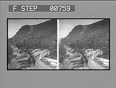 view In the Gardiner River Canyon, Eagle's Nest Rock on left, Yellowstone Park, U.S.A. Caption No. 12004 : stereo photonegative digital asset: In the Gardiner River Canyon, Eagle's Nest Rock on left, Yellowstone Park, U.S.A. Caption No. 12004 : stereo photonegative, 1904.