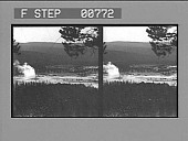 view Charm of the tourists--Old Faithful Geyser and Old Faithful Inn. [Active no. 12054 : stereo photonegative,] digital asset: Charm of the tourists--Old Faithful Geyser and Old Faithful Inn. [Active no. 12054 : stereo photonegative,] 1904.