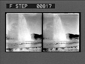 view [Geyser in action in park : stereo photonegative,] digital asset: [Geyser in action in park : stereo photonegative,] 1904.