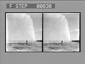 view [Man viewing geyser in action stereo photonegative,] digital asset: [Man viewing geyser in action stereo photonegative,] 1904.