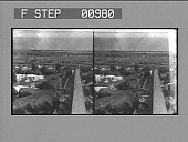 view [Overview of horsemen moving cattle in Chicago stockyards. Stereo photonegative,] digital asset: [Overview of horsemen moving cattle in Chicago stockyards. Stereo photonegative,] 1904.