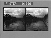 view [River and trees, West Indies : stereo photonegative.] digital asset: [River and trees, West Indies : stereo photonegative.]