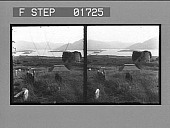 view [Landscape in Great Britain : stereo photonegative.] digital asset number 1
