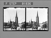 view [Plaza in Sweden: stereo photonegative.] digital asset number 1