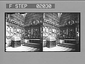 view [Art in Germany: stereo photonegative,] digital asset: [Art in Germany: stereo photonegative,] 1901.