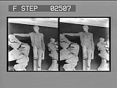 view [Statues, Greece: stereo photonegative.] digital asset: [Statues, Greece: stereo photonegative.]
