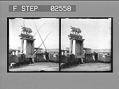 view [Pedestal with sculpture of lion, Greece: stereo photonegative.] digital asset: [Pedestal with sculpture of lion, Greece: stereo photonegative.]
