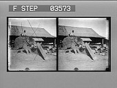 view The elephant at work transporting heavy teakwood logs in a lumber yard, Rangoon. [Caption no. 14558 : stereoscopic photonegative.] digital asset: The elephant at work transporting heavy teakwood logs in a lumber yard, Rangoon. [Caption no. 14558 : stereoscopic photonegative.]