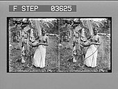 view A Singhalese girl with her water jar. [Active no. 14327 : stereo photonegative.] digital asset: A Singhalese girl with her water jar. [Active no. 14327 : stereo photonegative.]